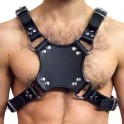 Mister B Walking Harness Black/Black