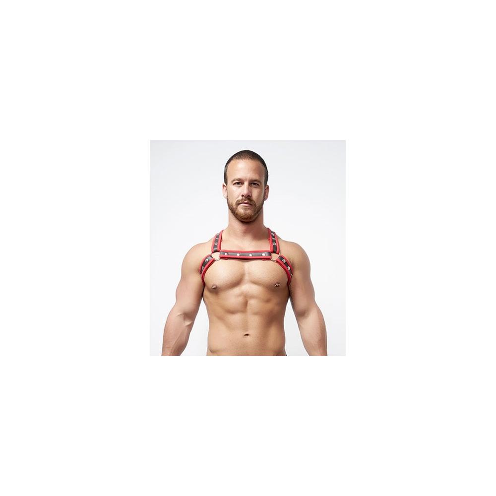 Mister B Neoprene X Back Harness Black Red