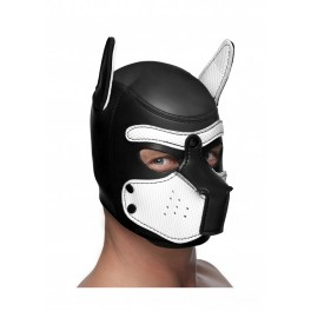 Master Series Spike Neoprene Puppy Hood - Black and White