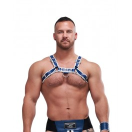 Mister B Leather Circuit Harness Blue White