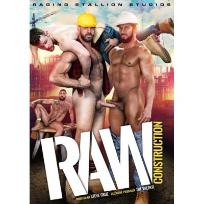 DVD Raw Construction